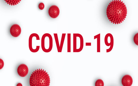 COVID-19 Updates – small limited companies and support from the Government.